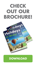 Check out our Brochure!
