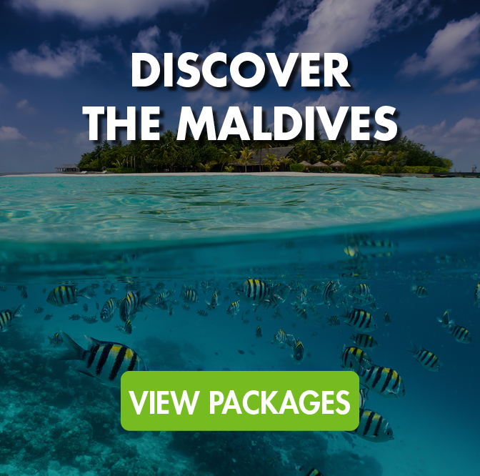 Discover The Maldives