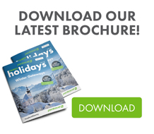 Download Our Latest Brochure!