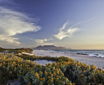 Durban to Cape Town Cruise