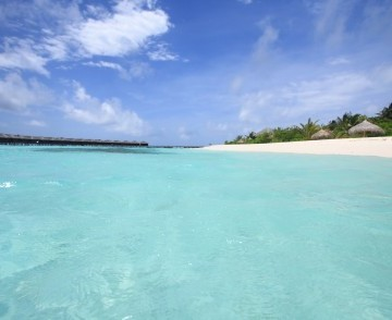maldives_thomp_06.jpg