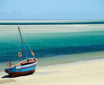 Cruise to Mozambique!